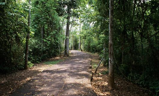 Parque Chico Mendes en Rio Branco